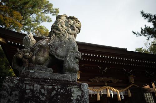 20191231 Shrine 4