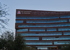 The University of Arizona - Phoenix