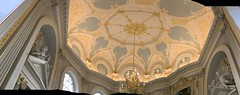 Panoramic view of the Octagon roof