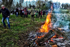 Foxs Morris at The Dodford Wassail 2020 - bonfire in the orchard