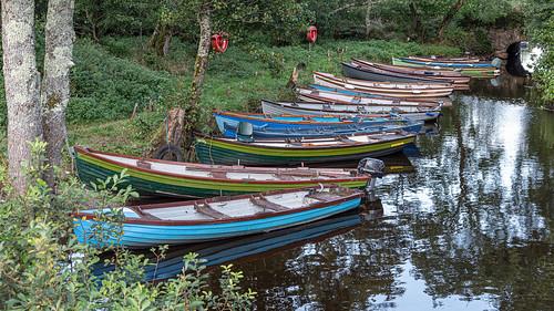 Ireland 2019 - boats at Ross Castle, Killarney