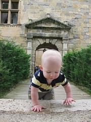 FR11 5575 Baby James. Château des Ducs de Joyeuse. Couiza, Aude