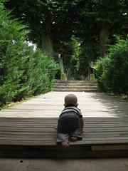 FR11 5550 Baby James. Château des Ducs de Joyeuse. Couiza, Aude