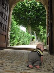 FR11 5537 Baby James. Château des Ducs de Joyeuse. Couiza, Aude