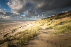 Beach at Westenschouwen, The Netherlands