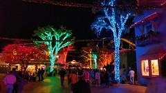 2019_San Antonio_Six Flags Fiesta_18