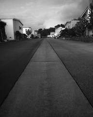 Week 2: My Street