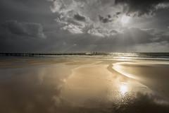 Beterelandschapsfoto-kust-wkrkshop