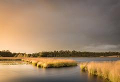 Fotoreis-Noord-Brabant-Beterelandschapsfoto-Boxtel