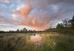 Workshop-Landschapsfotografie-Beterelandschapsfoto-Noord-Brabant (4)