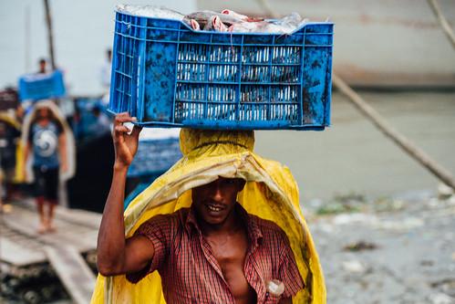 Longshoreman Carrying Frozen Fish, Sadarghat Dhaka Bangladesh