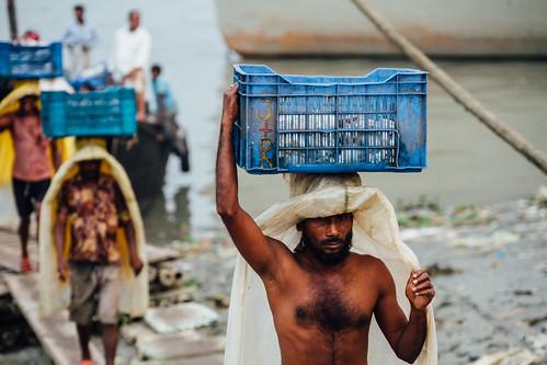 Men Unloading Frozen Fish, Dhaka Bangladesh