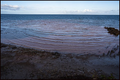 Work continues to stop erosion of Red Cliffs of Scarborough-1=