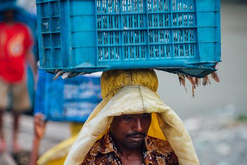 Docker Carrying Frozen Fish, Dhaka Bangladesh