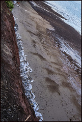 Work continues to stop erosion of Red Cliffs of Scarborough-3=