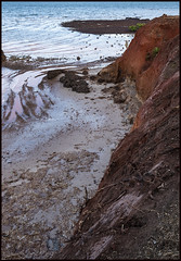 Work continues to stop erosion of Red Cliffs of Scarborough-4=