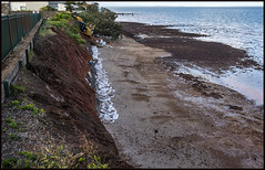 Work continues to stop erosion of Red Cliffs of Scarborough-5=