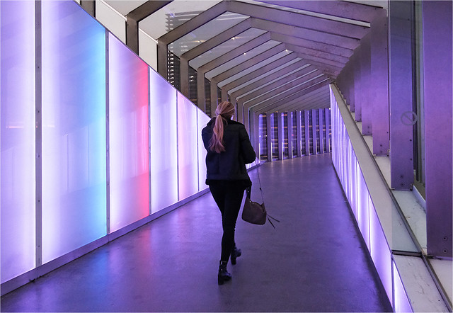 Purple walkway