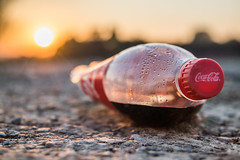 Weggeworfene Plastikflasche steht stellvertretend für das immer größer werdene Problem von Plastikmüll