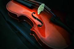 Violin Music Musical Design Edited 2020