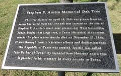 Stephen F. Austin Memorial Oak Tree Marker (Hondo, Texas)