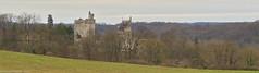 Château de Vez - Photo of Puiseux-en-Retz