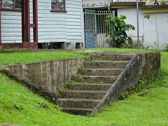 Steps in the Front Lawn