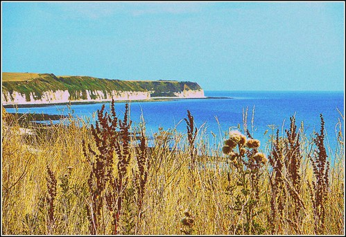 Flamborough Coastline ...