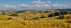 Rolling hills. It's Australia