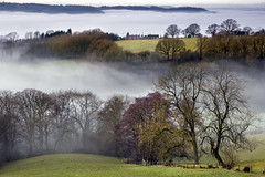 WORCESTERSHIRE MISTS