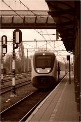SLT 2563