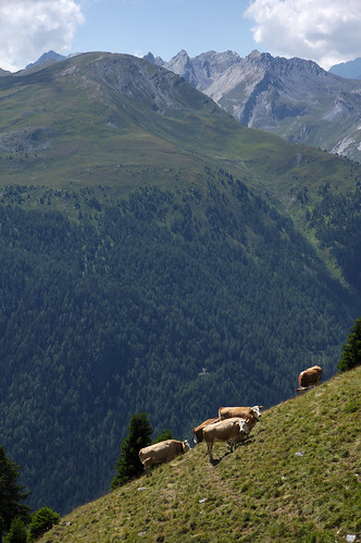 Hiking to Col de Mille