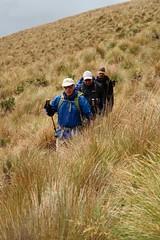 Trekking in the paramo