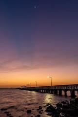 Ballast Point Dawn Vertical