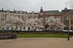 Prins Hendrikplein in Den Haag (136FJAKA_3291)