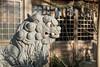 Photo:20200102 Shrine 1 By BONGURI