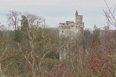 Le donjon de Vez - Photo of Puiseux-en-Retz
