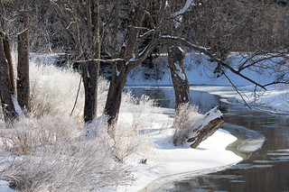 Icy wonderland by the river (Large)