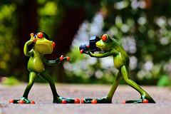 Frogs Headphones Music Dance Pose  Edited 2020