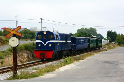 CP 9004