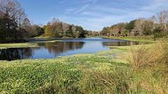 Walter Fuller Park, St Petersburg, Florida