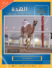 صور سباق الحقايق (الأشواط العامة إنتاج) مهرجان سمو الأمير الوالد صباح 18-1-2020