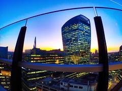 «The walkie-talke». London skyline & blue hour