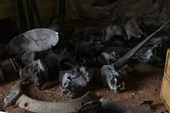 Fw 190 A8 remains, Ecausseville, Normandie - Photo of Écoquenéauville