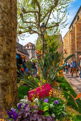 Colmar/Alsace 21.4.2019