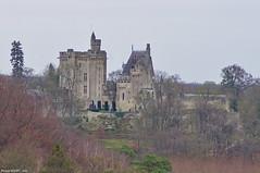 Donjon de Vez - Photo of Puiseux-en-Retz