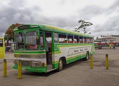 Local (Japanese) Bus