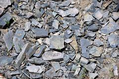 Phosphate-rich sedimentary rock (Phosphoria Formation, Permian; Deer Creek Valley area; Preuss Range, Idaho, USA) 12