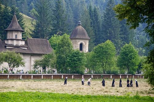 Femmes aux champs /Monastère Sucevita Roumanie