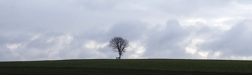 The One Tree Hill of Kemmental